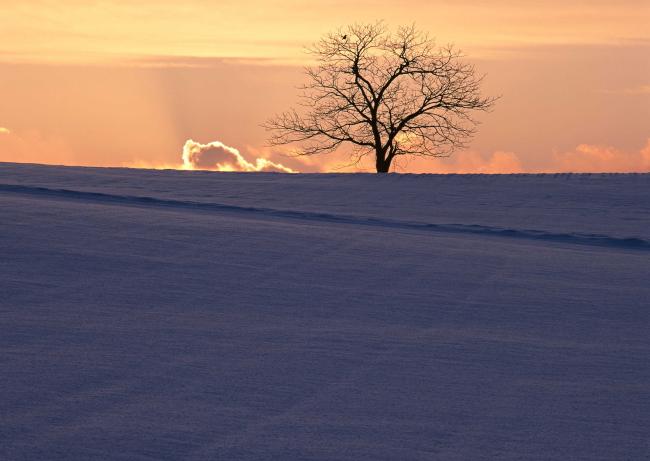 主页 原创专区 其它模板 其他模板 > 日出风景  关键词: 晚霞 黎明