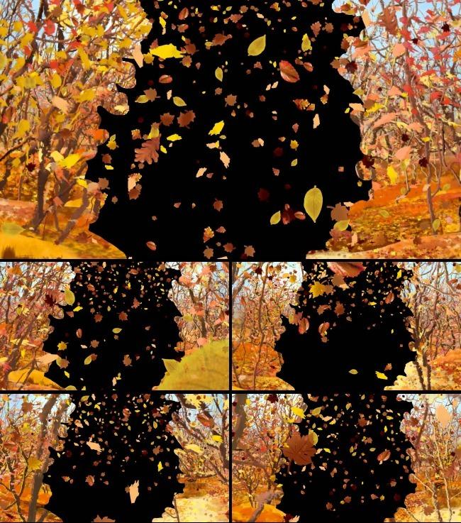 金秋丛林树叶飘落高清边框遮罩视频素材