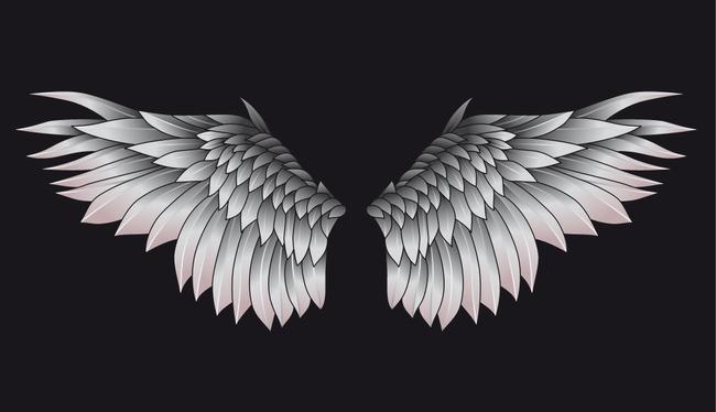 【ai】天使翅膀精美矢量图